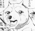Kyuki89234