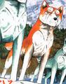 Yukimura GDW ed1 vol55