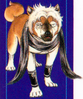 Masamune GDWO BD29 2
