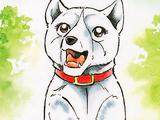 Koyuki (GDW)