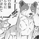 Seiji9823