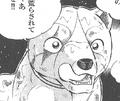 Kotetsu GDWO5