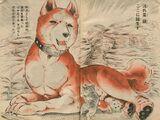 Fuji/Gallery