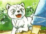 Koyuki (GDATJ)