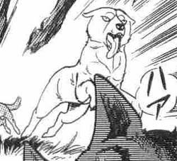 Ryuu22