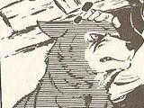 Musashi (Wolfdog)