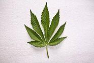 Weed alternative