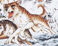 Shingaidenakatora