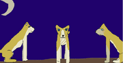 Aki, Yuko, and Junpei