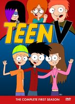 TeenV The Complete First Season DVD Box Set