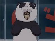 Hasegawa panda