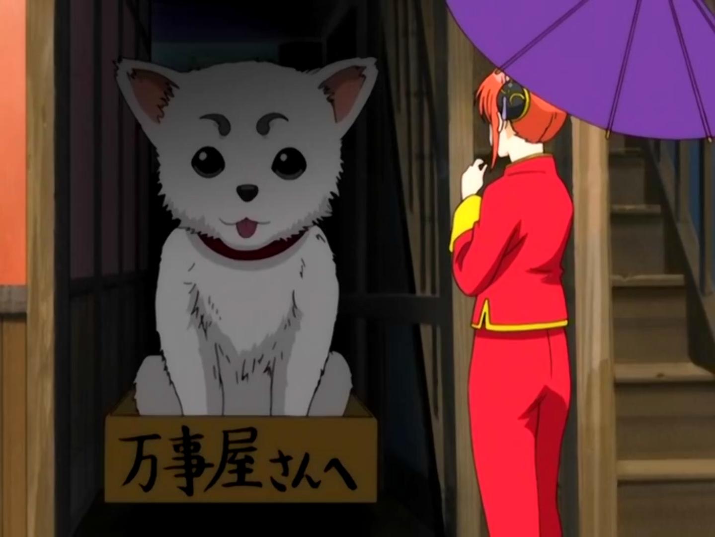 Kagura | Gintama | FANDOM powered by Wikia