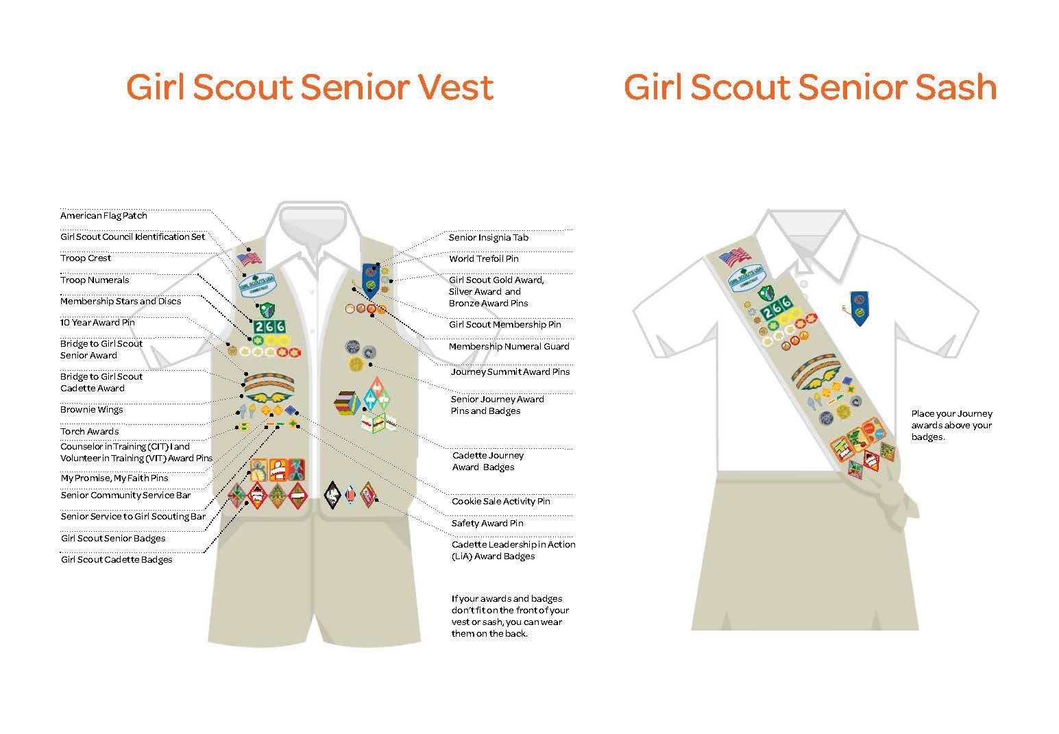 Girl Scout Senior Ambassador CIT COUNSELOR IN TRAINING AWARD PIN Bar Earned NEW