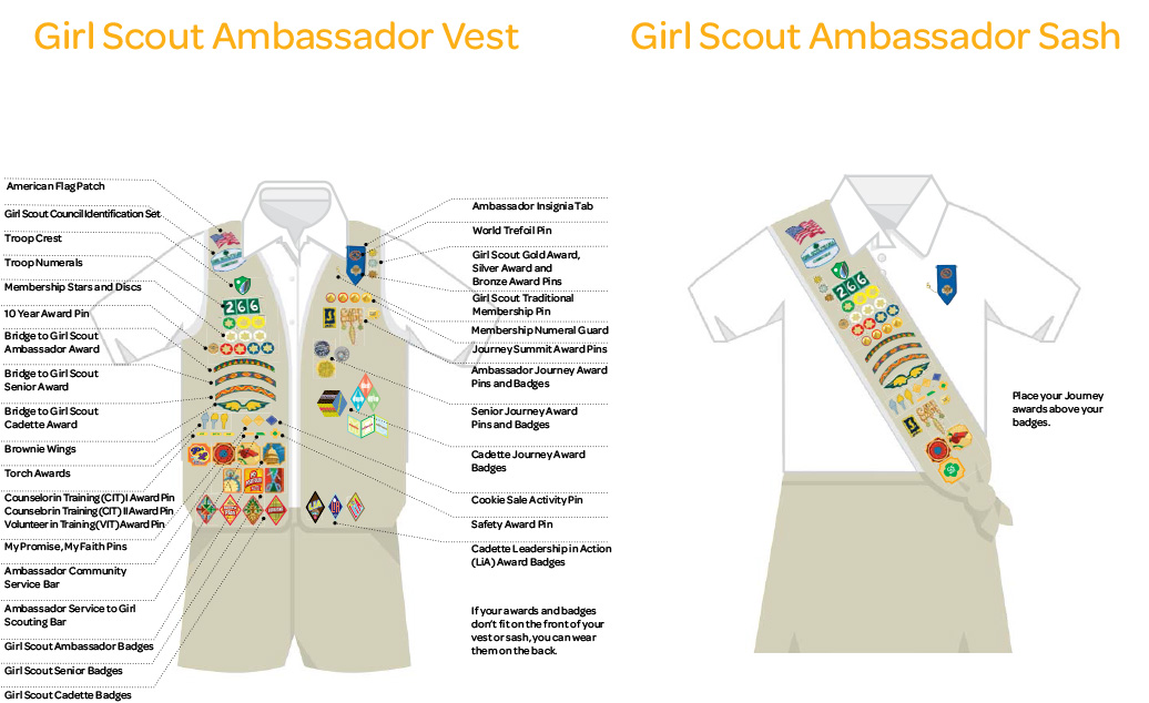 Girl Scout Ambassadors Girl Guides Wiki Fandom Powered By Wikia