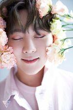 Seungkwan Special Photo TEEN, AGE