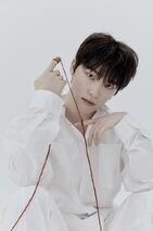 Dino 24H Official Photo