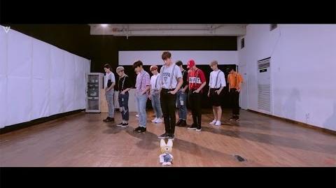 -SPECIAL VIDEO- SEVENTEEN(세븐틴) - '아주 NICE' (VERY NICE) DANCE PRACTICE ver
