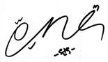 Wonwoo Signature