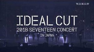 SPOT WOWOW 「2018 SEVENTEEN CONCERT 'IDEAL CUT' IN JAPAN」