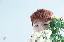 Woozi Special Photo TEEN, AGE