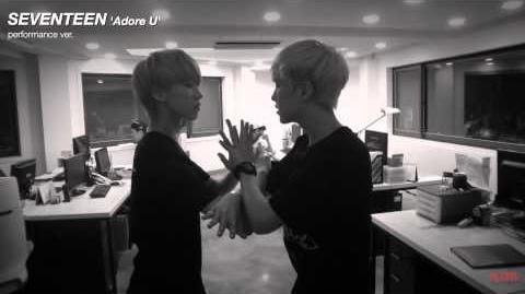-Special Video- SEVENTEEN - 아낀다 (Adore U) Performance Ver.
