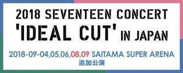 IDEAL CUT IN JAPAN