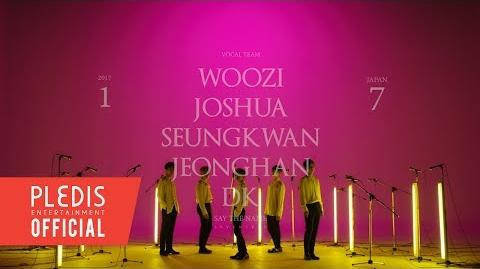 SPECIAL VIDEO '17 JAPAN CONCERT Say the name SEVENTEEN' VOCAL Team VCR