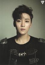 17carat Black Seungkwan