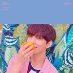 JOSHUA You Make My Day Concept Photo SET THE SUN Version