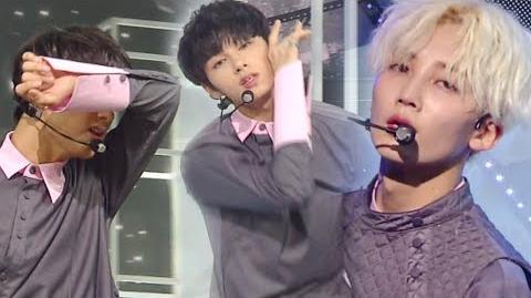 《Comeback Special》 SEVENTEEN (세븐틴) - Don't Wanna Cry (울고 싶지 않아) @인기가요 Inkigayo 20170528