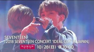 DIGEST WOWOW 「2018 SEVENTEEN CONCERT 'IDEAL CUT' IN JAPAN」