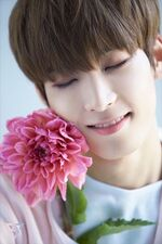 Wonwoo Special Photo TEEN, AGE