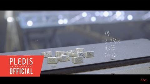 M V SEVENTEEN(세븐틴)-웃음꽃(Smile Flower)