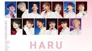 SPOT DVD&Blu-ray 『SEVENTEEN 2019 JAPAN TOUR 'HARU'』