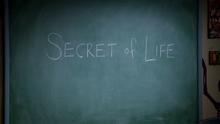 Secret of Life - Matthews' History Class Chalkboard (World of Terror 3)