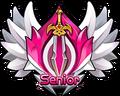 1o1-2Senior