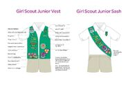 2014 junior vest sash insignia placement