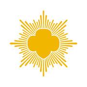 40962780 gsusa gold award starburst