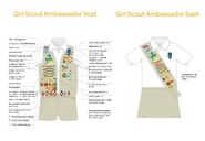 2014 ambassador vest sash insignia placement