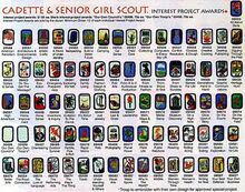 Interest projects (Girl Scouts of the USA)