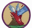 Practice with Purpose (Junior badge)