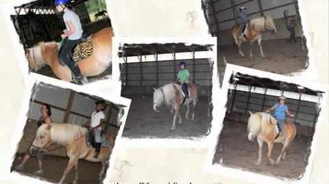 Horseback Riding Badge for Junior Girl Scouts