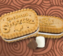 Girl Scout S'mores