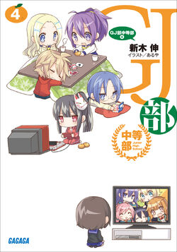 Novel junior 4