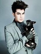 Adam Lambert321