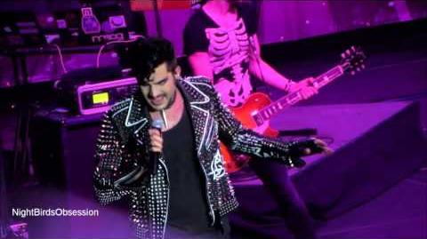 "ADAM LAMBERT ""The Light"" - Live Debut Performance - Revention Center Houston 10.28"