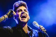 Adam Lambert4587