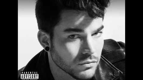 Adam Lambert - Things I Didn't Say