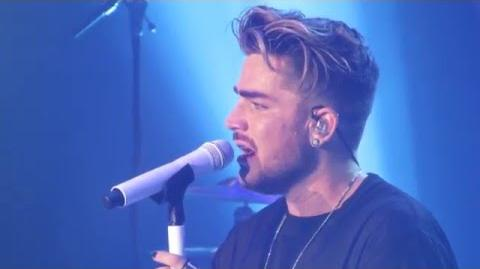Adam Lambert — Mad World -Celebrate 2016 Encore-