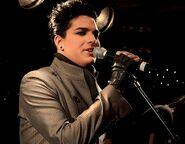 Adam Lambert456554